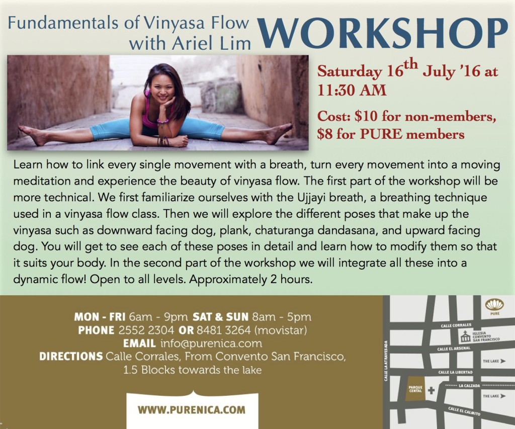160709_Ariel_Vinyasa-Workshop